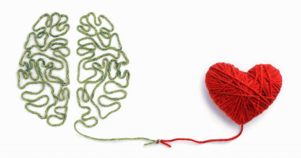 cohérence cardiaque cerveau et coeur